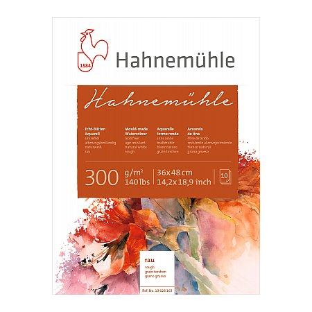 Hahnemuhle, block 300g,10 ark, rough - 36x48cm